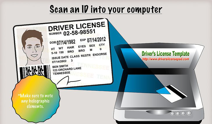 photo relating to Printable Fake Ids named Motorists License - Wrong Motorists License - Motorists License PSD