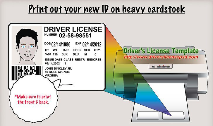photograph relating to Printable Fake Ids named Motorists License - Untrue Motorists License - Motorists License PSD