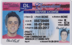 Drivers License - Drivers License PSD | Connecticut Drivers License ...